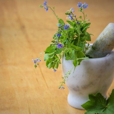 Estratti vegetali biologici